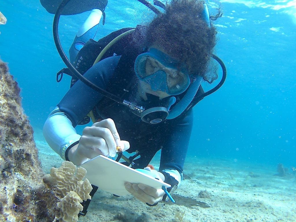 Coral Research at Zoe - A Living Sea Sculpture